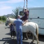 Permettre à tous de monter à cheval